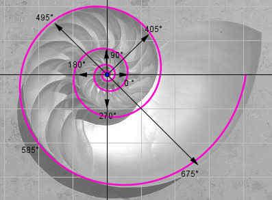 logarithmische spiralen rsg wiki. Black Bedroom Furniture Sets. Home Design Ideas