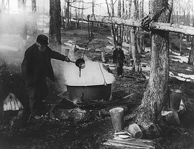 Boiling Maple Syrup, Eastern Townships.jpg